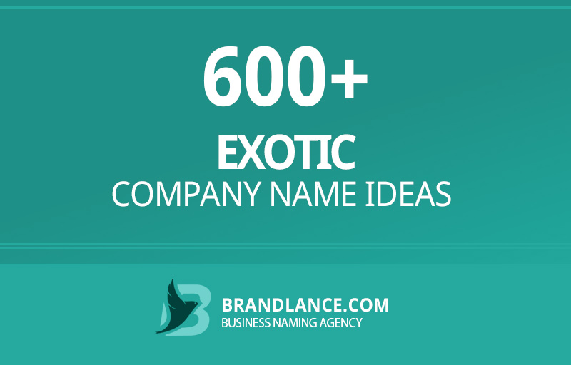 Exotic company name ideas for your new business venture