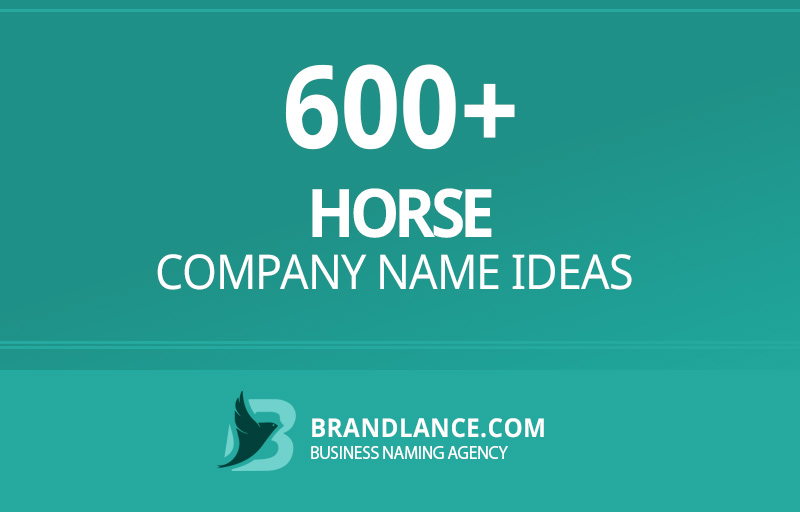 Horse company name ideas for your new business venture
